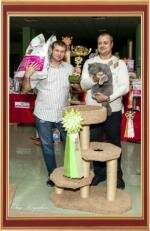 "We took part in the International Cat Show September 29-30, ""The Cup of the White City"", WCF in champion class."
