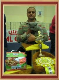 "International Cats Show on September 15-16, 2012, the International Championship ""Master CAT"", the cup ""Royal Canin"" Kharkiv (Ukraine)."