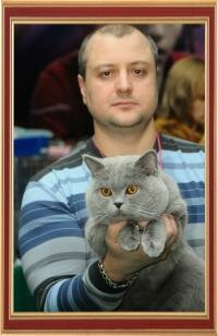 International Cats Show on 26-27 January 2013, Dnepropetrovsk