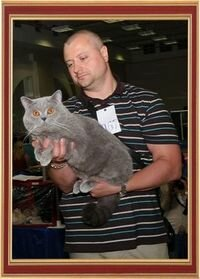 "International Cat Show 11-12 May 2013 ""May Star"", Gomel, Belarus."