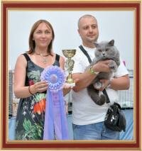 "International Cat Show 22-23 June 2013 ""Chersonesus Cup"", Sevastopol, Ukraine."