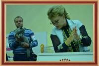 "International Cat Show 14-15 September 2013, an international championship ""Master CAT"", Kharkiv (Ukraine)."